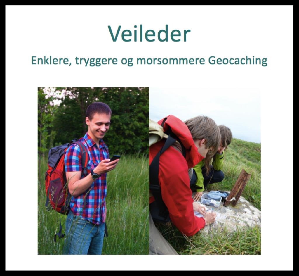 Veileder-lenke